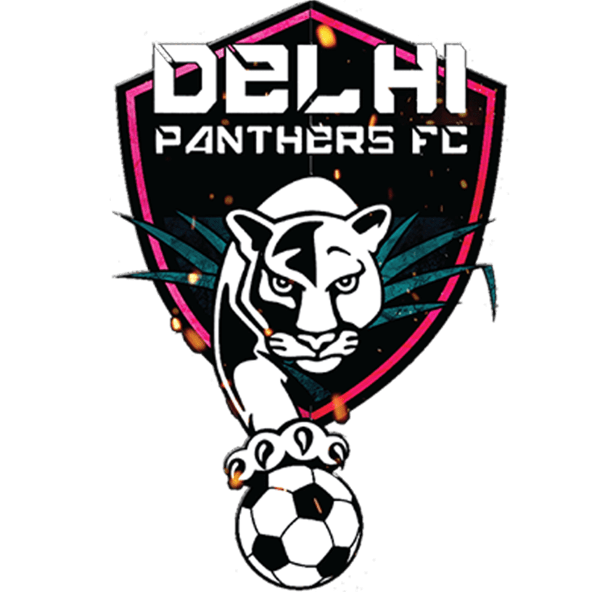Delhi Panthers FC